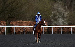 Dommersen ridden by Robert Havlin before the Better Odds With Matchbook Magnolia Stakes during the Easter Family Fun Day at Kempton Park Racecourse.