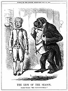 The Lion of the Season':  John Leach cartoon from 'Punch' London 25 May 1861, while controversy over Darwin's 'Origin of Species' was raging. Engraving