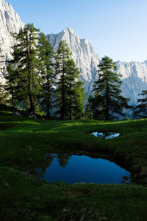 Mount Jalovec reflected in a pool, view from &quot;Sleme&quot;<br /> Julian Alps<br /> Triglav National Park, Slovenia<br /> July 2009