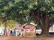 Locals gather under a huge tree near the beach at Juquehy, Brazil, just a two hour drive from Sao Paulo.