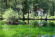 Villa, Teich, Schweizermühle, Rosenthal, Elbsandsteingebirge, Sächsische Schweiz, Sachsen, Deutschland | villa, pond, Schweizermühle, Rosenthal, Saxon Switzerland, Saxony, Germany