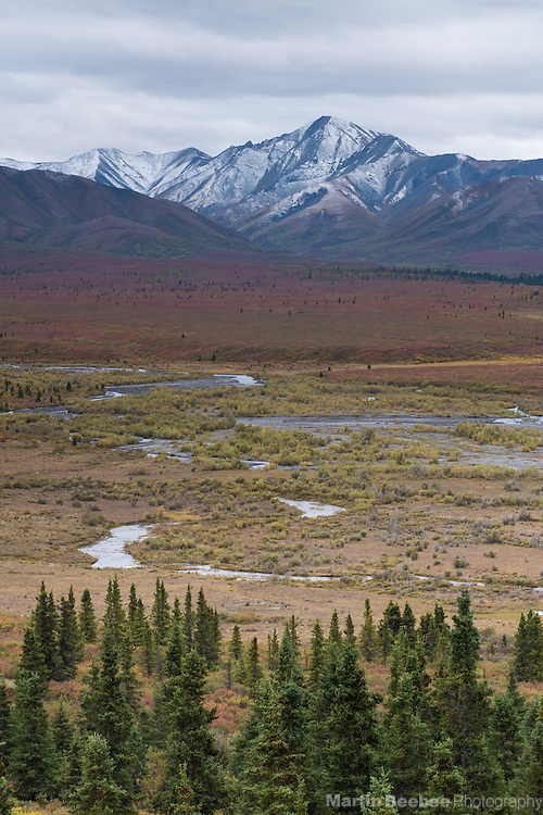 Mountains above the Savage River, Denali National Park, Alaska