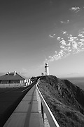 The road to the Byron Lighthouse allows for an amazing view