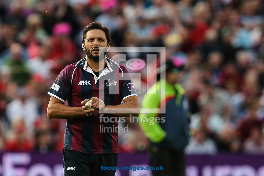 Shahid Afridi of Northants Steelbacks during the Natwest T20 Blast Final at Edgbaston, Birmingham<br /> Picture by Andy Kearns/Focus Images Ltd 0781 864 4264<br /> 29/08/2015