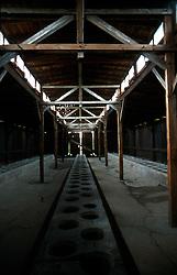 POLAND AUSCHWITZ AUG96 - An empty barrack for Auschwitz prisoners.<br /> <br /> jre/Photo by Jiri Rezac<br /> <br /> &copy; Jiri Rezac 1996<br /> <br /> Tel:   +44 (0) 7050 110 417<br /> Email: info@jirirezac.com<br /> Web:   www.jirirezac.com