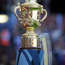 BIRMINGHAM, ENGLAND - SEPTEMBER 26: The world cup during the Rugby World Cup 2015 Pool B match between South Africa and Samoa at Villa Park on September 26, 2015 in Birmingham, England. (Photo by Steve Haag/Gallo Images)