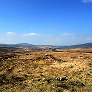 View of Sally Gap in the Dublin Mountains.