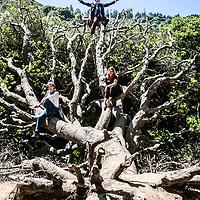 Biomimicry_hike_YA
