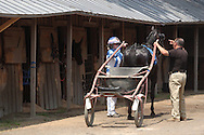 Goshen, NY -  A female driver and a trainer remove a sulky from behind a horse at Goshen's Historic Track on June 7, 2008.