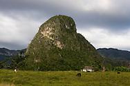 Farm and mogote, El Moncada, Pinar del Rio, Cuba.
