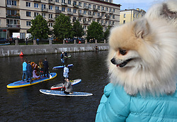 July 8, 2017 - St. Petersburg, Russia - Russia, St. Petersburg, on July 8, 2017. St. Petersburg International sea festival 2017. Participants of a festival of SUP surfing on the Fontanka River, during the fancy-dress race on surfboards. More than 300 athletes and fans of driving on boards with an oar have participated in a festival. Total length of a distance will make about 10 kilometers. (Credit Image: © Andrey Pronin via ZUMA Wire)