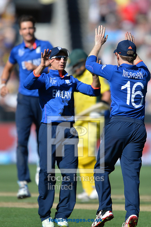 Eoin Morgan of England (R) celebrates with his team mate James Taylor  during the 2015 ICC Cricket World Cup match at Melbourne Cricket Ground, Melbourne<br /> Picture by Frank Khamees/Focus Images Ltd +61 431 119 134<br /> 14/02/2015