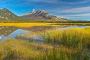 Jasper Lake<br />Jasper National Park<br />Alberta<br />Canada