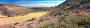 Panoramic view of a playa on Isla Partida