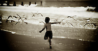 A boy chases seagulls by the ocean.  Cape May, NJ.