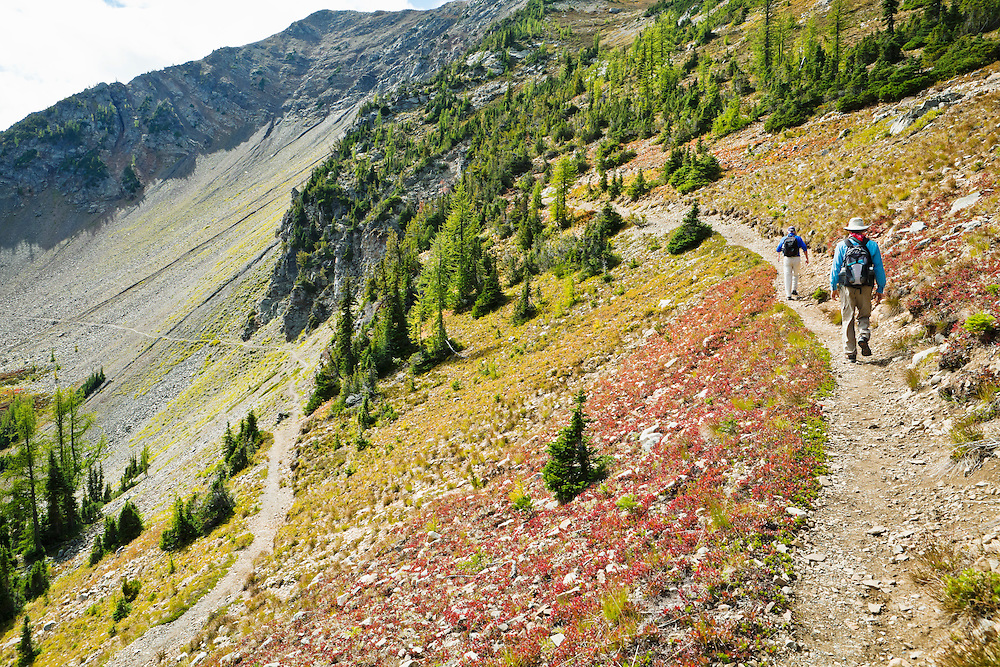 Two men hiking up some switchbacks  in the North Cascade mountains on the Pacific Crest Trail just north of Harts Pass, Washington, USA.            Model Released: 20100913_MR_A and 20100913_MR_B