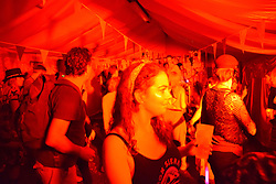 Latitude Festival 2016, Henham Park, Suffolk, UK