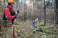 Ruffed grouse hunter in northern Wisconsin with his English Setter.