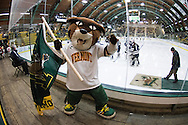 Rally, Vermont's mascot cheers for the team during the women's hockey game between the New Hampshire Wildcats and the Vermont Catamounts at Gutterson Field House on Friday night February 3, 2017 in Burlington. (BRIAN JENKINS/for the FREE PRESS)