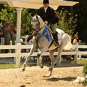 Becky Holder (USA) and Courageous Comet at the 2007 Maui Jim Horse Trials held in Wayne, IL, USA