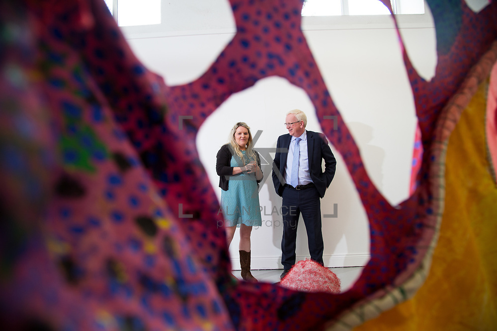 31.05.2017      <br /> Limerick School of Art and Design, LSAD Graduate Show Feature.<br /> Pictured is Tara Keegan with Prof. Vincent Cunnane, President LIT. Picture: Alan Place.