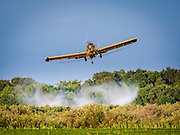 A crop duster sprays a field in Manitoba