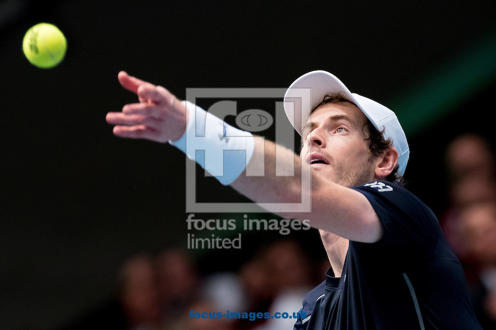 Andy Murray during the final of the Erste Bank Open at Wiener Stadthalle, Vienna, Austria.<br /> Picture by EXPA Pictures/Focus Images Ltd 07814482222<br /> 30/10/2016<br /> *** UK &amp; IRELAND ONLY ***<br /> EXPA-PUC-161030-0370.jpg