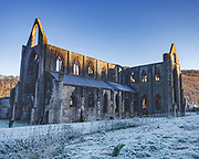 Ruined Tintern Abbey, England / Wales borders in the cool of a winter frost.