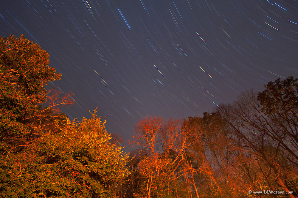 Picture of star trails taken in my backyard. The trees were lit from my  back porch light.