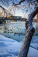 Slottet i Stockholm vinter sett från Skeppsholmen