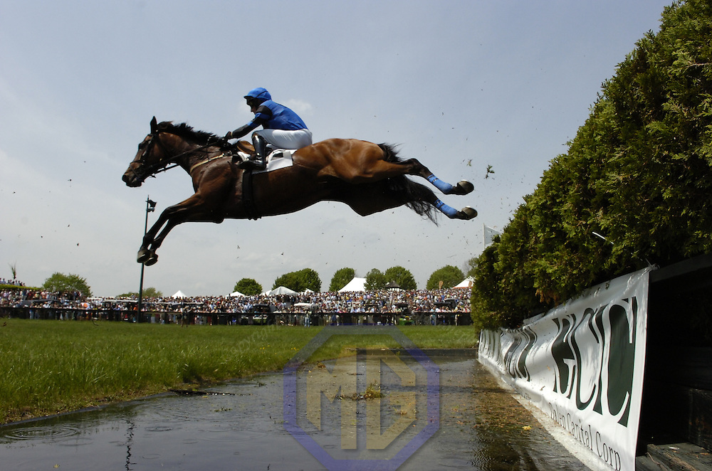 03 May 2008:  Robert Walsh aboard Plum Brush takes the water jump in the 1st race of the 83rd running of the Virginia Gold Cup Races on October 20, 2007 at the Great Meadow in The Plains, Va..