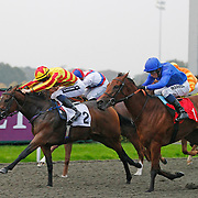 Kempton 15th October