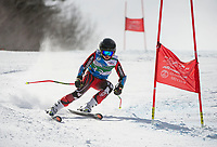 Niche Invitational GS U14 mens 2nd run.  ©2018 Karen Bobotas Photographer