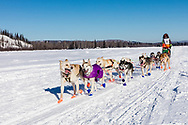Musher Justin High competing in the 45rd Iditarod Trail Sled Dog Race on the Chena River after leaving the restart in Fairbanks in Interior Alaska.  Afternoon. Winter.