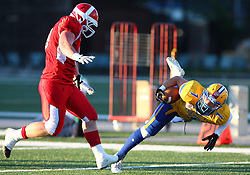 06.06.2014, Stadion Ravelinstrasse, Wien, AUT, American Football Europameisterschaft 2014, Spiel um Platz 5, Daenemark (DEN) vs Schweden (SWE), im Bild Hjalte Kristian William  Froholdt, (Team Denmark, DL, #99) und  Sebastian Gauthier, (Team Sweden, RB, #1) // during the American Football European Championship 2014 game for place 5 between Denmark and Sweden at the UPC Arena, Graz, Austria on 2014/06/06. EXPA Pictures © 2014, PhotoCredit: EXPA/ Thomas Haumer