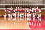 Photography of the 2011 Arkansas Razorback volleyball team.