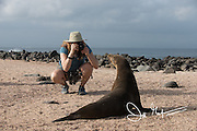 A tourist to the Galapagos islands takes a photo of a Galapagos sea lion on North Seymour island.