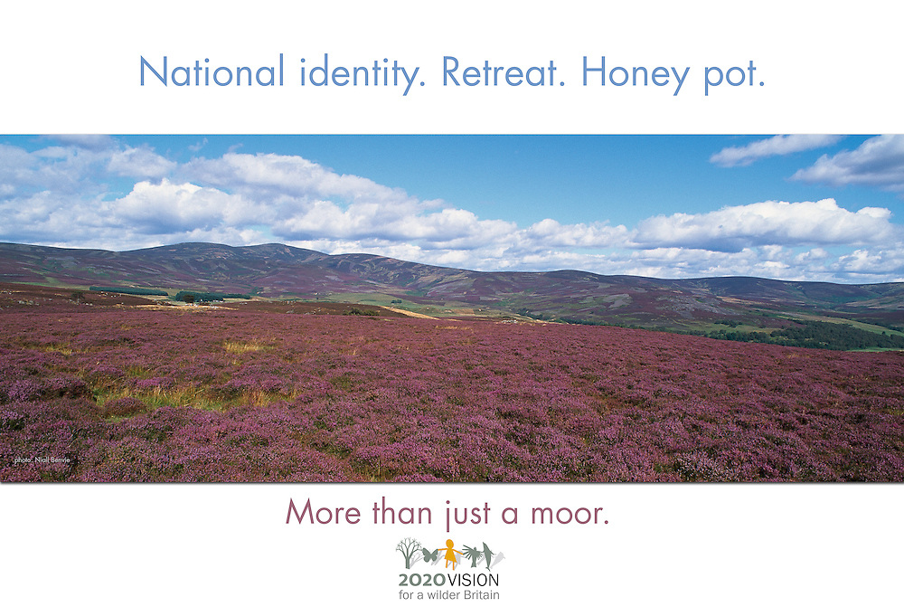 More than just...moorland poster