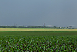 Sun shining beneath the overcast skies light up parts of the fields of grain crops and make the power lines glisten