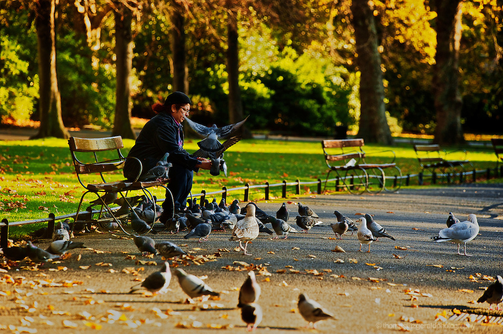 Woman feeding the pigeons in Stephens Green