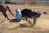 Rodeo: Salinas, California