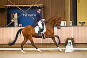 Bo Oudhof - Colt Sollenburg<br /> KNHS Indoorkampioenschappen 2017<br /> © DigiShots
