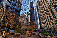 Zuccotti Park, Downtown NYC