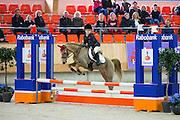 Eva Kapteijn - Desperado<br /> KNHS Indoorkampioenschappen 2016<br /> © DigiShots