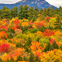 New England fall foliage in peak colors leading the way to Mount Chocorua in the New Hampshire White Mountains. <br />