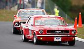 NZ Festival of Motor Racing