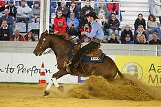 Reining  Aachen 2015 European Championship
