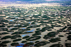 CANADA ALBERTA FORT MCMURRAY 10MAY07 - Aerial view of Boreal wetlands south of McClelland lake north of Fort McMurray, Alberta, Canada. The Alberta Tar Sands are the largest deposits of their kind in the world and their production is the single largest contributor to Canada's greenhouse gas emissions...Alberta's tar sands are currently estimated to contain a crude bitumen resource of 315 billion barrels, with remaining established reserves of almost 174 billion barrels, thus making Canada's oil resources ranked second largest in the world in terms of size...The industry has brought wealth and an economic boom to the region but also created an environmental disaster downstream from the Athabasca river, polluting the lakes where water and fish are contaminated. The native Indian tribes of the Mikisew, Cree, Dene and other smaller First Nations are seeing their natural habitat destroyed and are largely powerless to stop or slow down the rapid expansion of the oil sands development, Canada's number one economic driver...jre/Photo by Jiri Rezac / WWF-UK..© Jiri Rezac 2007..Contact: +44 (0) 7050 110 417.Mobile: +44 (0) 7801 337 683.Office: +44 (0) 20 8968 9635..Email: jiri@jirirezac.com.Web: www.jirirezac.com..© All images Jiri Rezac 2007 - All rights reserved.