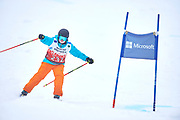Schladming, Austria - 2017 March 19: Myrthe Bechger from Netherlands (232) competes in Alpine Skiing Competition while Special Olympics World Winter Games Austria 2017 on the &quot;Sepp-Walcher-Downhill&quot;<br /> (Slope 32) near the &quot;Tauernalm&quot; in Rohrmoos on March 19, 2017 in Schladming, Austria.<br /> <br /> Mandatory credit:<br /> Photo by &copy; Adam Nurkiewicz / Mediasport<br /> <br /> Adam Nurkiewicz declares that he has no rights to the image of people at the photographs of his authorship.<br /> <br /> Picture also available in RAW (NEF) or TIFF format on special request.<br /> <br /> Any editorial, commercial or promotional use requires written permission from the author of image.<br /> <br /> Image can be used in the press when the method of use and the signature does not hurt people on the picture.