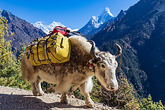 Everest Trekking, Nepal